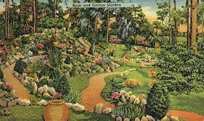 Cactus Garden - Cypress Gardens, Florida FL Postcard