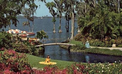 Roses - Cypress Gardens, Florida FL Postcard