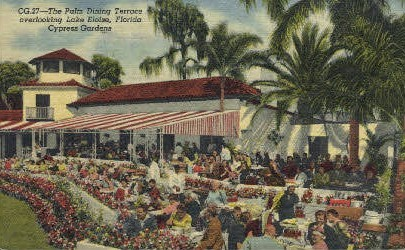 Palm Dining - Cypress Gardens, Florida FL Postcard