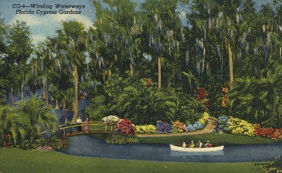 Winding Waterways - Cypress Gardens, Florida FL Postcard