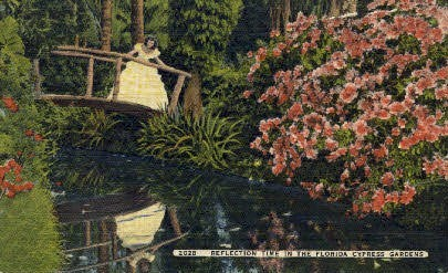 Reflection Pool - Cypress Gardens, Florida FL Postcard