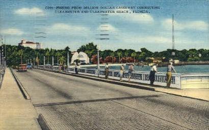Fishing - Clearwater, Florida FL Postcard