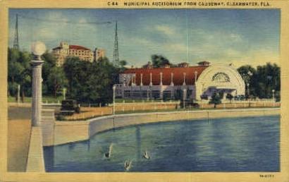 Park   - Clearwater, Florida FL Postcard