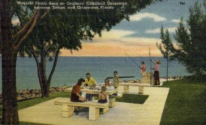 Wayside Picnic Area - Clearwater, Florida FL Postcard