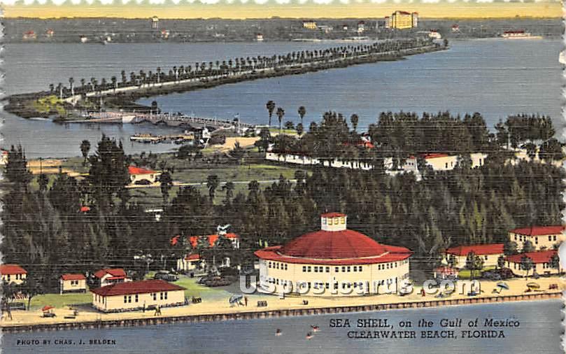 Sea Shell, Gulf of Mexico - Clearwater Beach, Florida FL Postcard