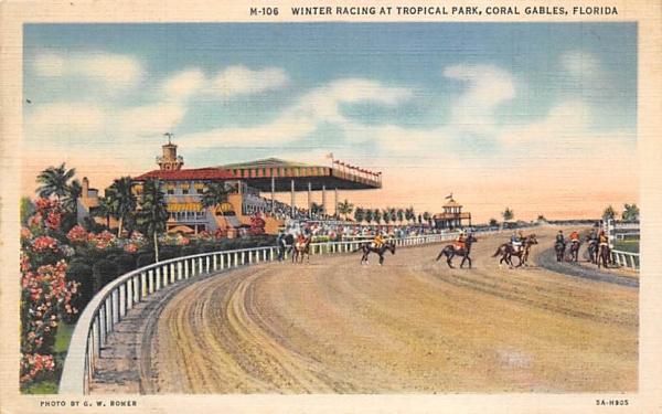 Winter Racing at Tropical Park Coral Gables, Florida Postcard