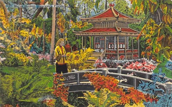 Marine Gardens Clearwater, Florida Postcard