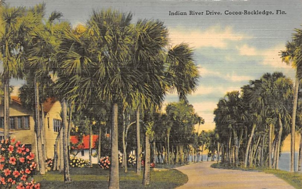 View along the Beautiful Indian River Cocoa Rockledge, Florida Postcard