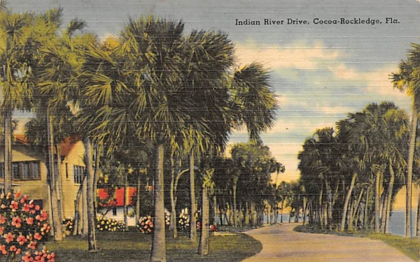 Indian River Drive Cocoa Rockledge, Florida Postcard