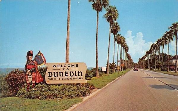 Dunedin's Famous Edgewater Drive Clearwater, Florida Postcard
