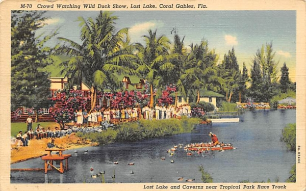 Crowd Watching Wild Duck Show, Lost Lake Coral Gables, Florida Postcard