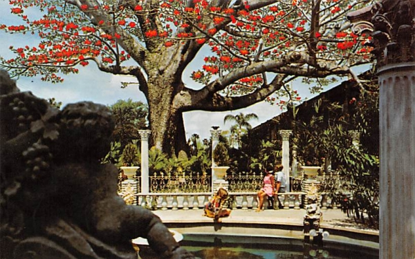 Kapok Tree Inn Clearwater, Florida Postcard