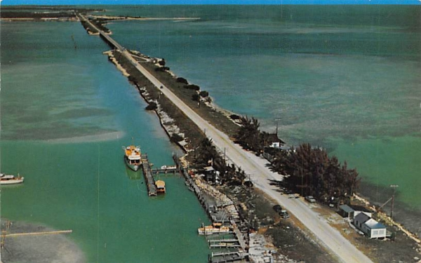 Craig Key Florida Postcard