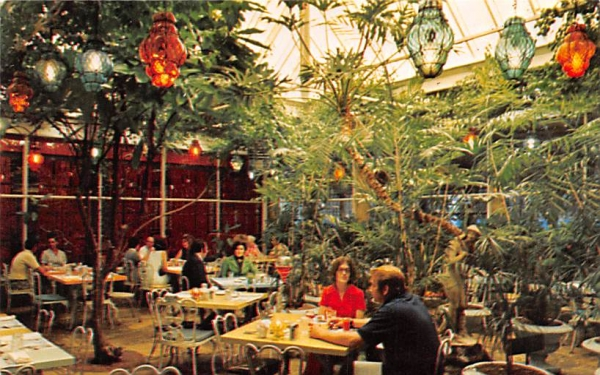 Patio Dinind Amid a Tropical Indoor Garden Clearwater, Florida Postcard