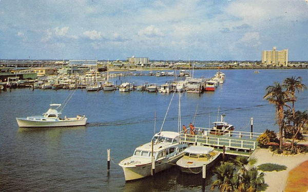 The Marina and Yacht Basin  Clearwater, Florida Postcard