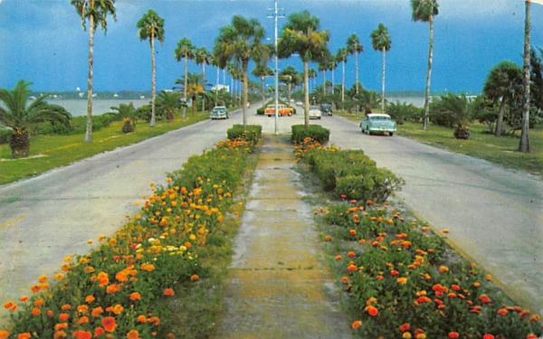 Flowerlined causeway Clearwater, Florida Postcard