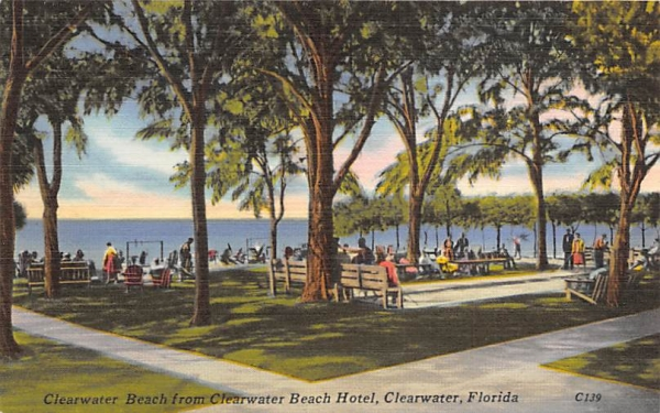 Clearwater Beach from Clearwater Beach Hotel Florida Postcard
