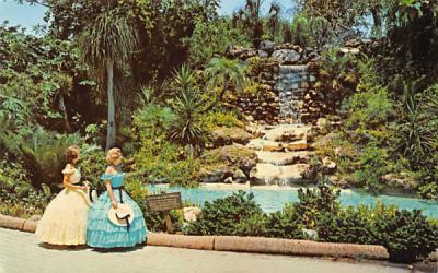 Florida's Cypress Gardens Postcard