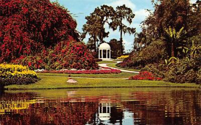 A Symbol a love Cypress Gardens, Florida Postcard