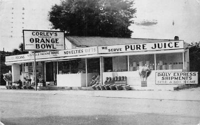 Corley's Indian River Orange Bowl Coconut Grove, Florida Postcard