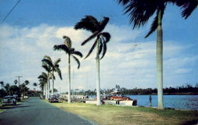 Yacht Harbor - Delray Beach, Florida FL Postcard