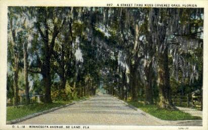 Minnesota Avenue - De Land, Florida FL Postcard
