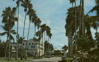 Sport Fishing Center - Everglades, Florida FL Postcard