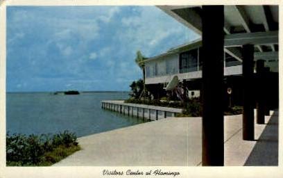 Flamingo - Everglades, Florida FL Postcard