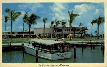 Sightseeing Boat - Everglades, Florida FL Postcard