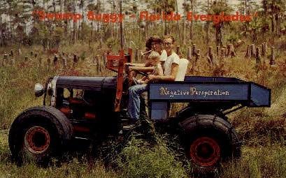 Swamp Buggy - Everglades, Florida FL Postcard