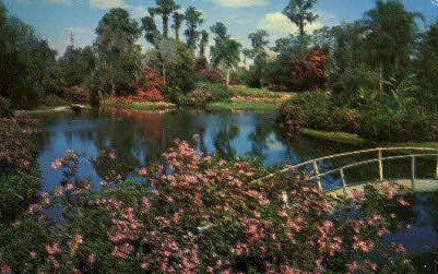 Gardens - Cypress Gardens, Florida FL Postcard