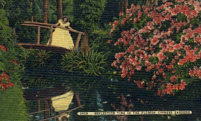 Reflection - Cypress Gardens, Florida FL Postcard
