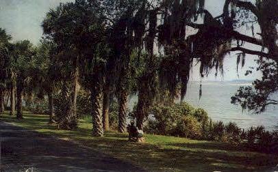 Indian River Drive - Cocoa, Florida FL Postcard