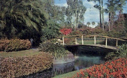 Natural Fairyland - Cypress Gardens, Florida FL Postcard