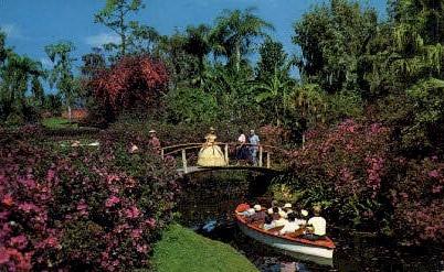Blossom Time - Cypress Gardens, Florida FL Postcard