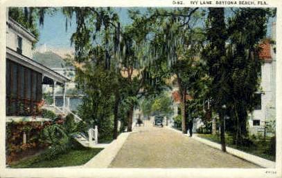 Ivy Lane - Daytona Beach, Florida FL Postcard