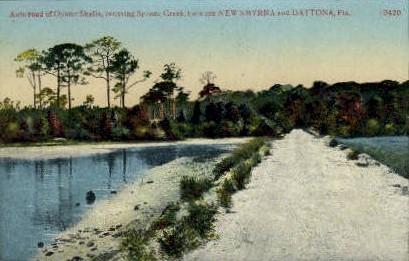 Spruce Creek - Daytona Beach, Florida FL Postcard