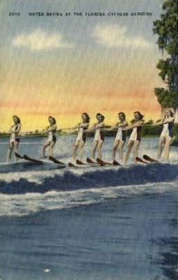 Skiing - Cypress Gardens, Florida FL Postcard