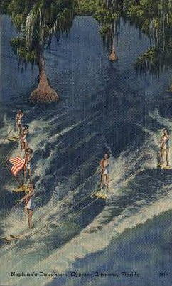 Neptune's Daughters - Cypress Gardens, Florida FL Postcard