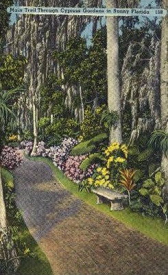 Main Trail - Cypress Gardens, Florida FL Postcard