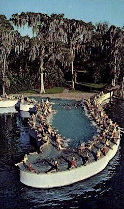 Esther Williams Swimming Pool - Cypress Gardens, Florida FL Postcard
