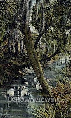 Old Spanish Canal - Daytona, Florida FL Postcard