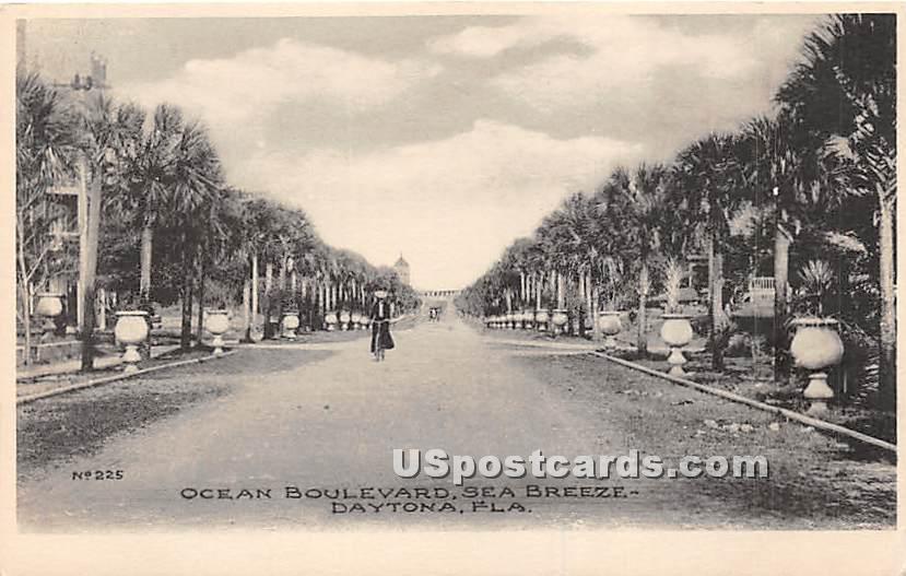Ocean Boulevard, Sea Breeze - Daytona, Florida FL Postcard