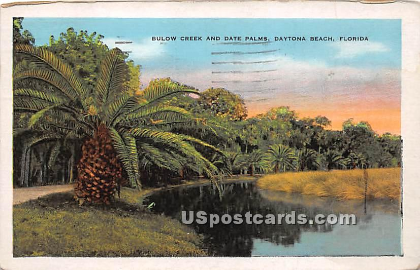 Bulow Creek & Date Palms - Daytona Beach, Florida FL Postcard
