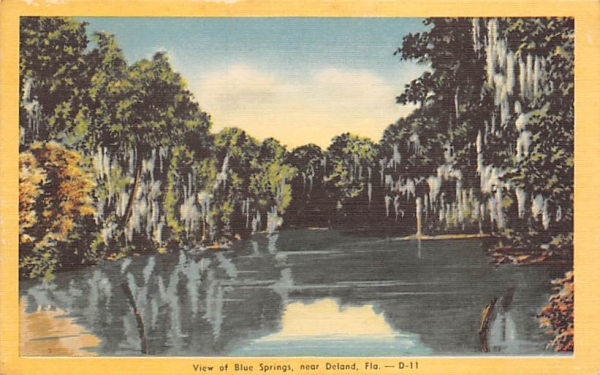 Near Deland, View of Blue Springs De Land, Florida Postcard