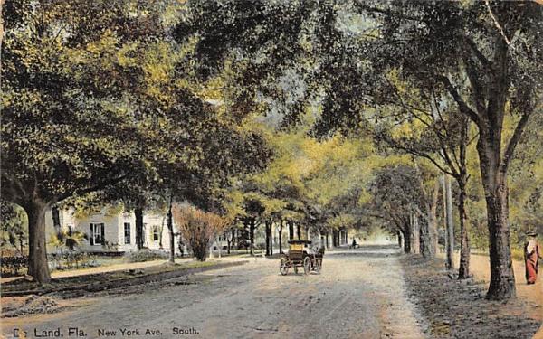 New York Ave. South  De Land, Florida Postcard