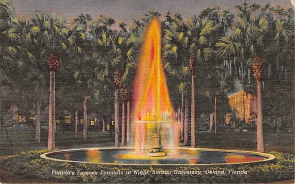 Florida's Famous Fountain at Night Postcard