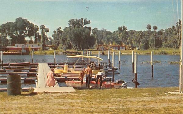 Near DeLand Boat Docks, Hontoon Island De Land, Florida Postcard