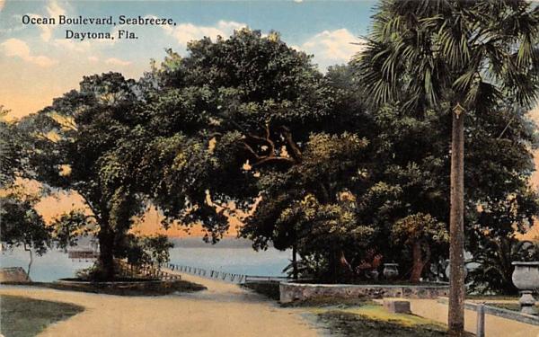 Ocean Boulevard Seabreeze Daytona, Florida Postcard