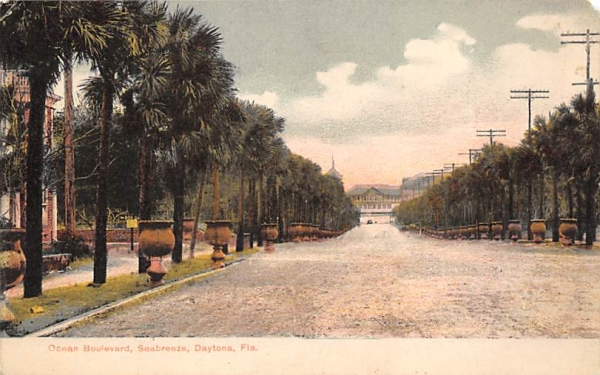 Ocean Boulevard, Seabreeze Daytona, Florida Postcard